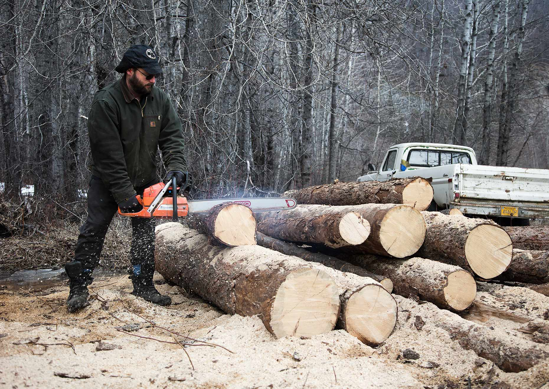 Cutting wood Haines